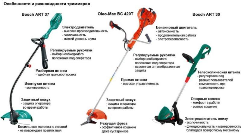 imgonline-com-ua-Resize-2doFROw8dkp