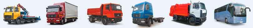 Линейка грузовых автомобилей МАЗ